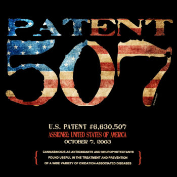 Patent 507 Design: BLACK FRONTS