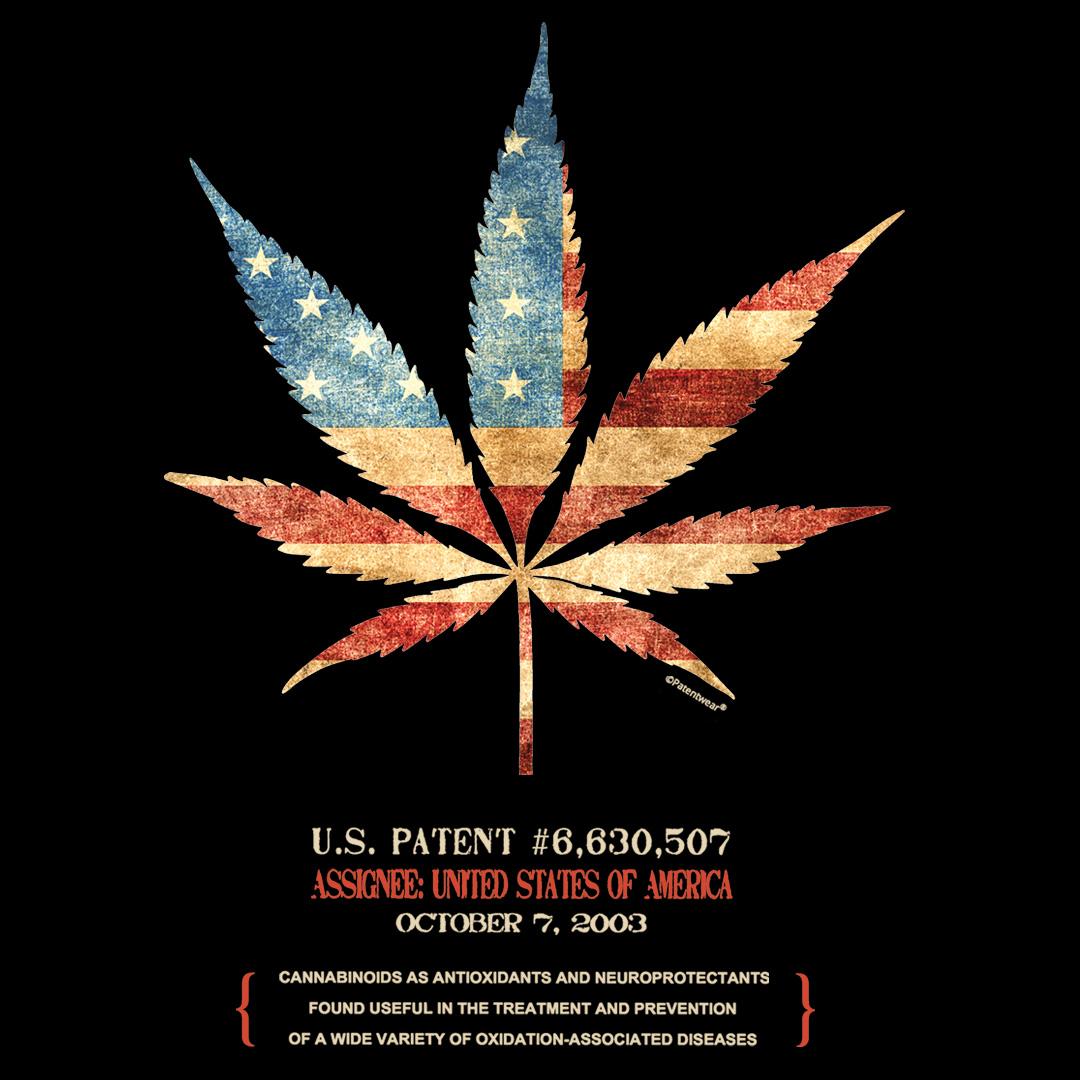 Cannabis 507