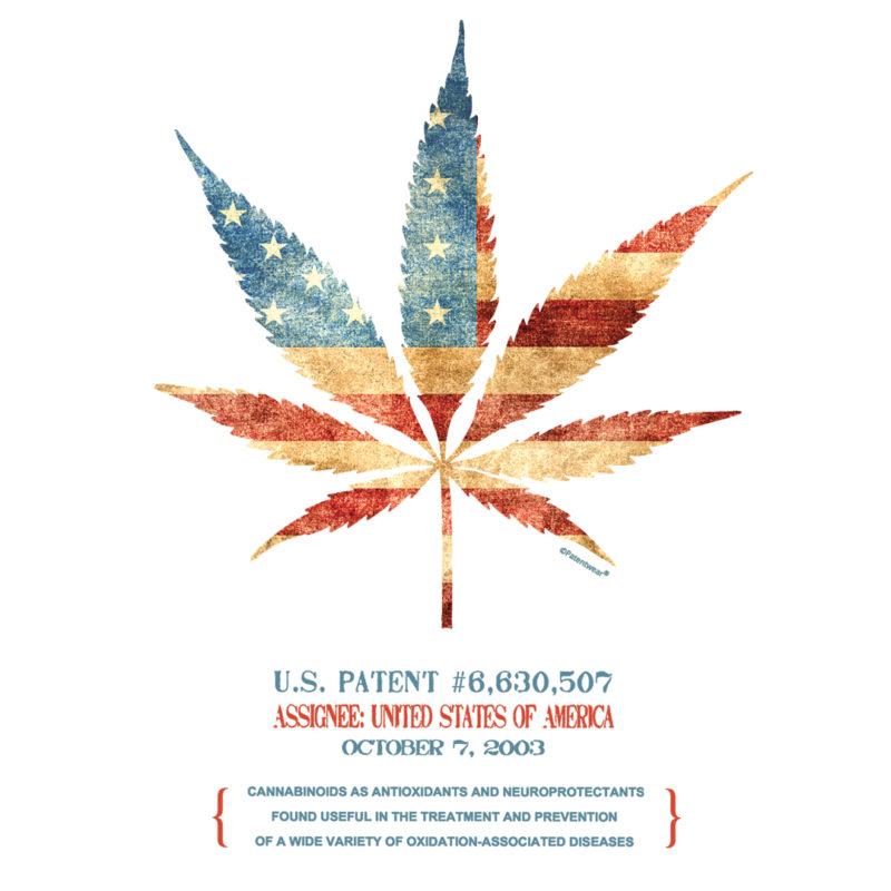 Cannabis 507 Design on Lights