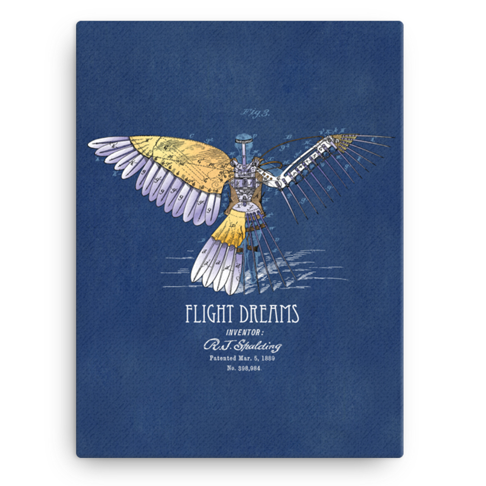 Flight Dreams Wall Art CANVAS 12x16