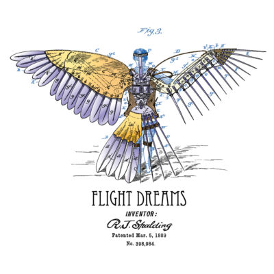 Flight Dreams Design